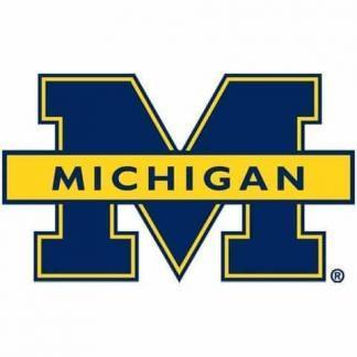 Michigan Wolverines College Logo Game Room Accessories