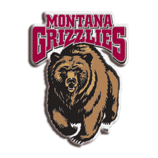 Montana Grizzlies College Logo Game Room Accessories
