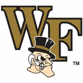 Wake Forest Demon Deacons College Logo Game Room Accessories